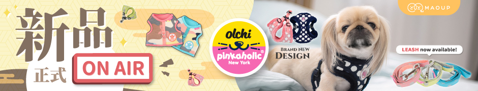 NEW ARRIVAL - Pinkaholic Harness and Leash