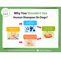 Why You Shouldn't Use Human Shampoo On Dogs?